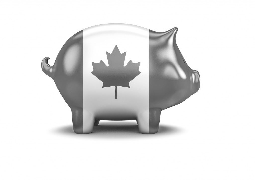 Canadian piggy bank / 3D render of piggy bank with Canadian flag
