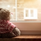 Teddy bear is looking out of the window, sunlight